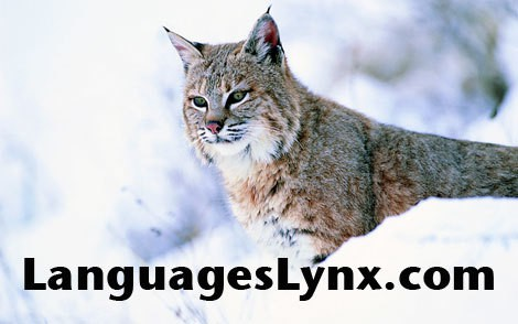LanguagesLynx.com Logo